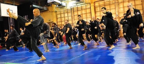 AKBAN Honbu Dojo - Old school, combat oriented Ninjutsu